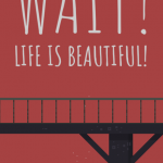 Cover Wait Life is Beautiful PC
