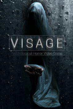 VISAGE 2020