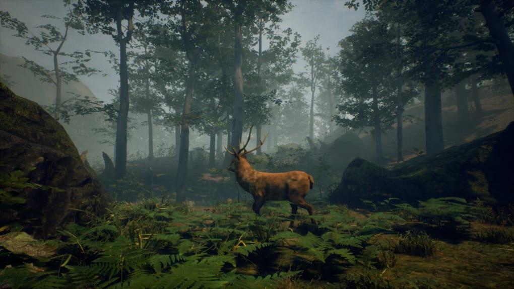 Gameplay de Folklore Hunter Pc